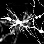 Resolume 4.1.11にFFGLプラグインsfFreeFrameを入れたメモ